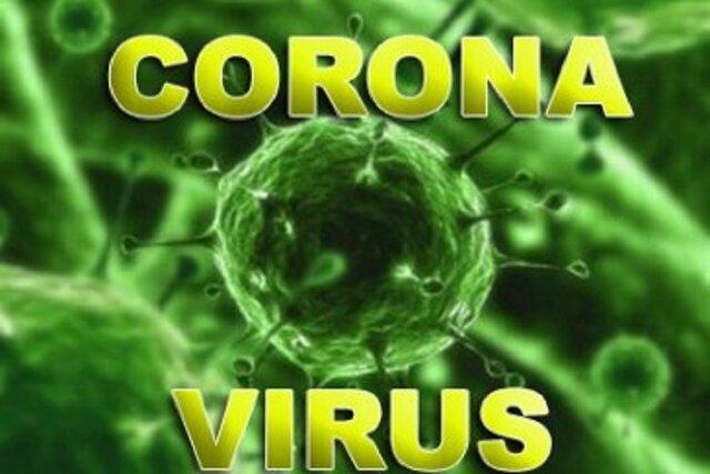 Coronavirus disease 2019 (COVID-19) and Marie Skłodowska Curie